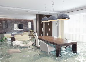 Water Damage Berks County, Water Damage Cleanup Berks County, Water Damage Repair Berks County