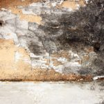 commercial mold remediation, commercial mold cleanup, commercial mold restoration